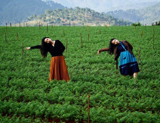 nhảy múa để tự do